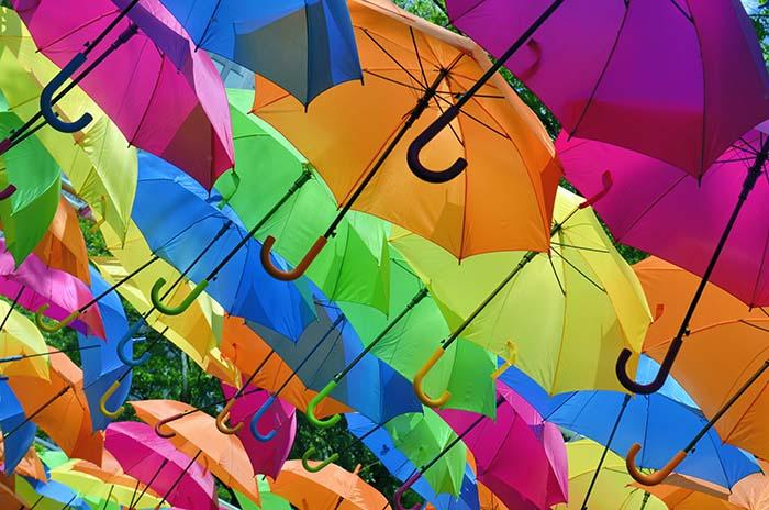 Beste paraplu van 2021